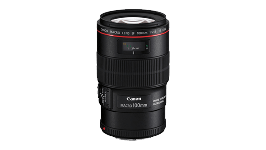 Storyworks | Canon EF 100mm f/2.8L Macro IS USM ( EF Mount )